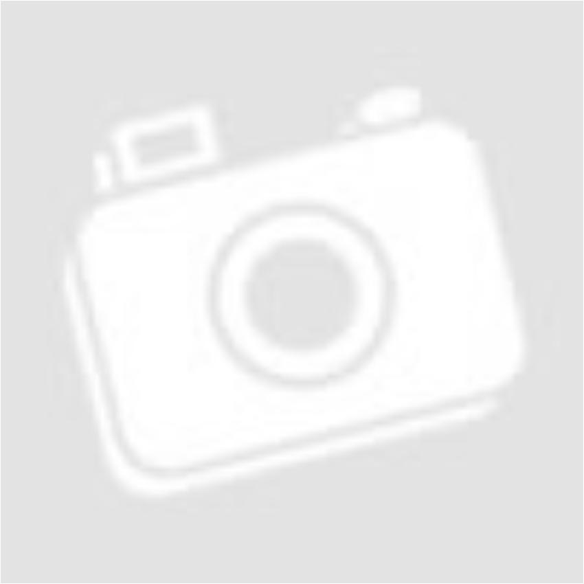 Lorelli Iris Isofix autós gyerekülés 9-36 kg - Blue 2019